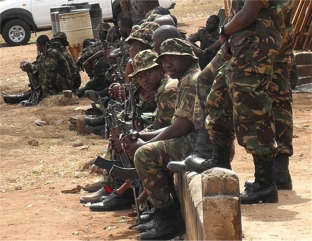 Tanzania is planning to send a contingent of 200 soldiers to Syria for the United Nations peacekeeping mission, the country's defense minister has revealed, local media reported on Tuesday, July 17, 2012.