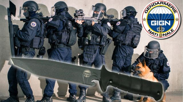 At SOFINS 2015, the International conference and exhibition dedicated for the Special Forces Operation of the French Army, the French company Wildsteer presented its tactical knives dedicated to special forces and intervention units, developed in collaboration with French famous intervention group GIGN (National Gendarmerie Intervention Group).