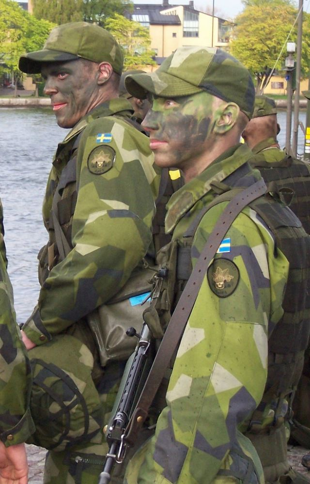 Sweden Swedish Army ranks land ground forces combat field uniforms military equipment grades