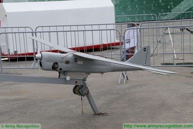 The unmanned aerial vehicle (UAV) battalion will appear in the 201st Russian military base deployed in Tajikistan by the end of the year, Commander of the Central MD Colonel-General Vladimir Zarudnitsky said on Thursday, May 25, 2017.